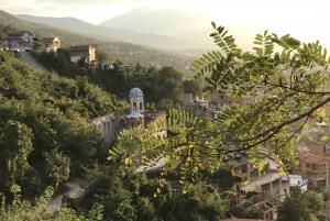 Tirana: The Pretty Town of Prizren Experience