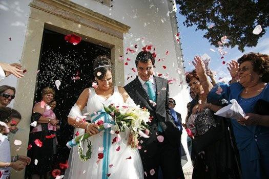 biodegradable 100/% petal 5 Pints of Real flower Confetti 50 Wedding Guests