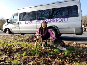Euro Pet Transport