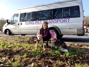 Euro Pet Transport
