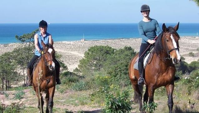 PineTrees Riding Centre