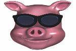 The Fat Pig Hog Roast