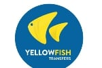 Yellowfish Transfers