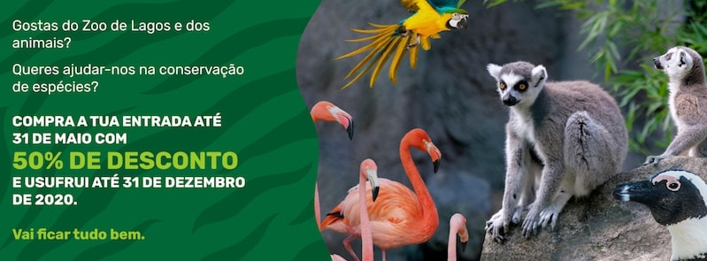 50% off Lagos Zoo tickets