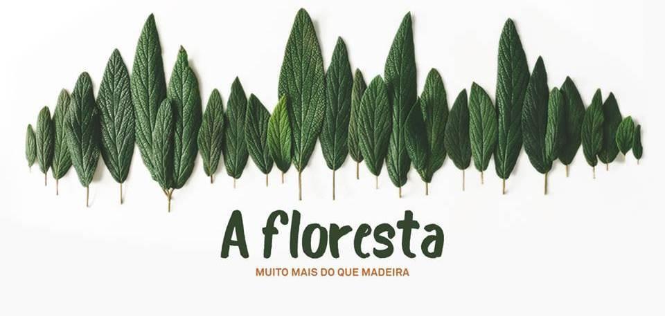 A Floresta Exhibition