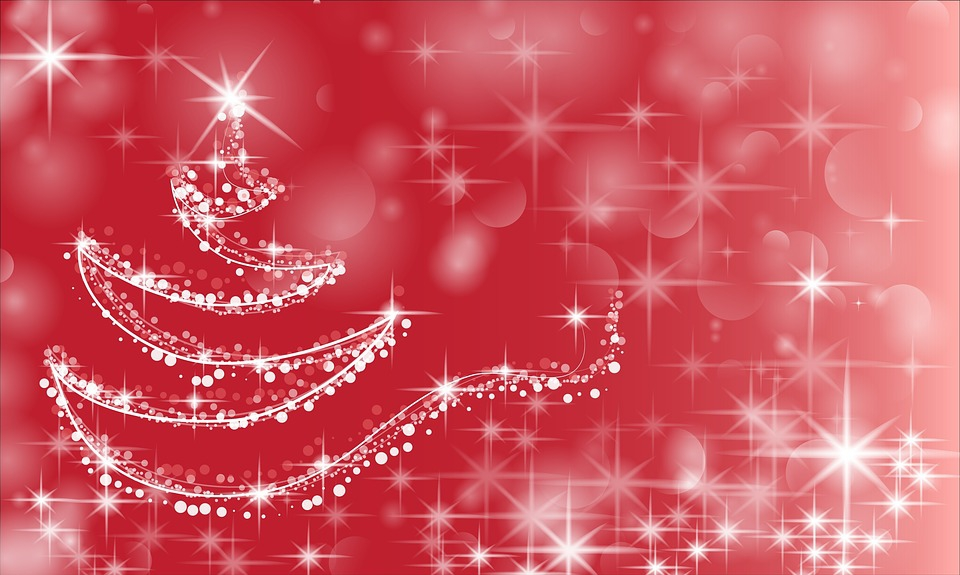 Annual Christmas Dinner & Party at O' Barradas