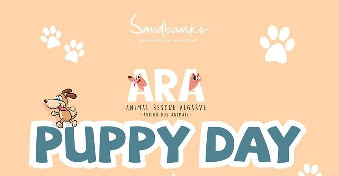 ARA Puppy Day at Sandbanks