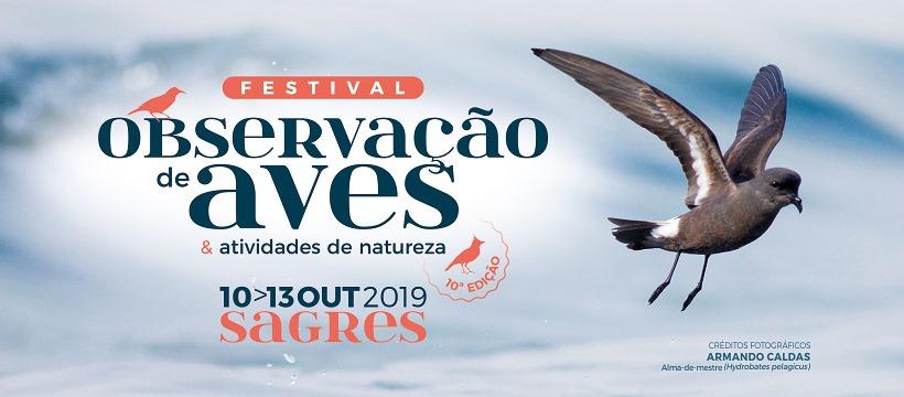 Birdwatching Festival - Sagres