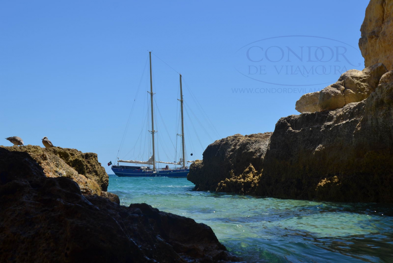 Condor Full Day Barbecue Cruises