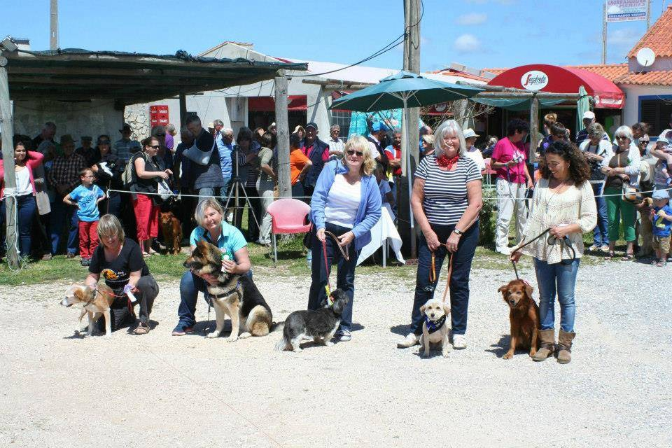 Costa Vicentina Dog Show
