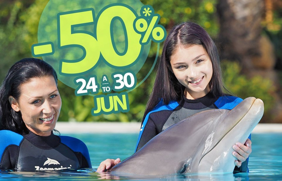Dolphin Emotions - Summer Discount for Algarve Residents