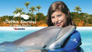 Early Bird Discount for Dolphin Emotions