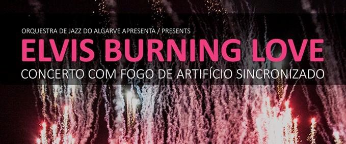 Elvis Burning Love - Summer Concert