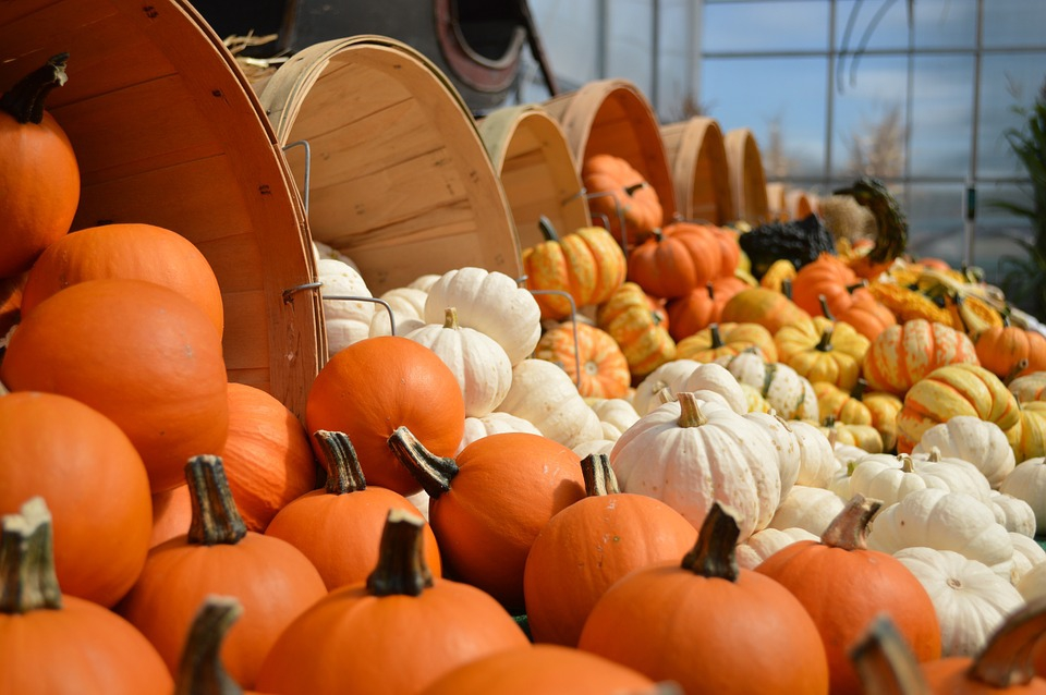 Halloween Pumpkin Masterclass at The Magnolia Hotel