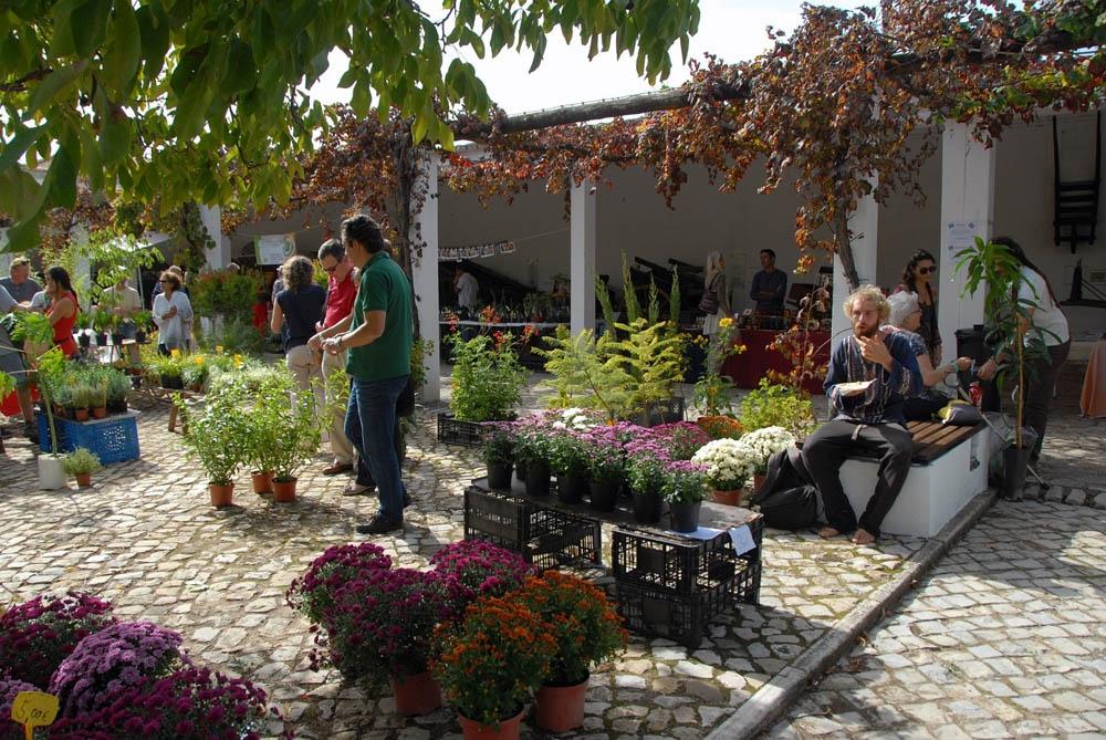 Mediterranean Garden Fair 2017