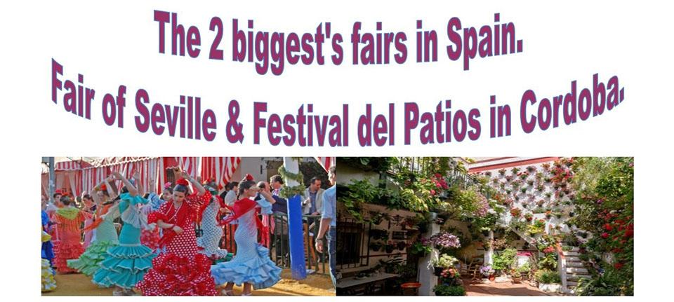 PDM Travel Seville and Cordoba Trip