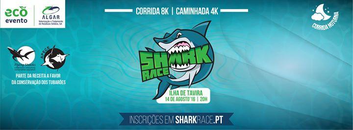 Shark Race Tavira