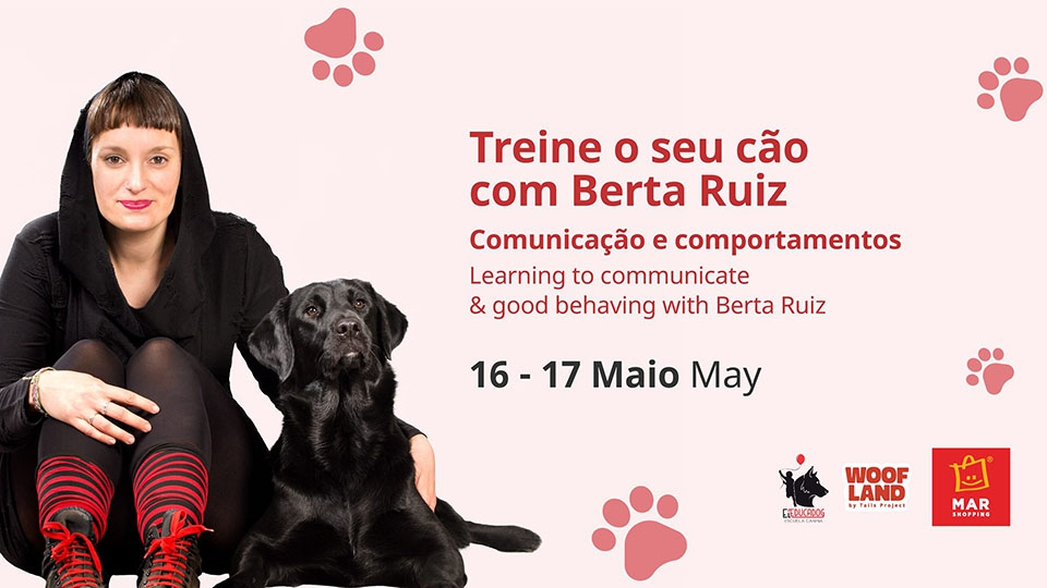 Train Your Dog Workshop / Workshop Treine o seu Cão