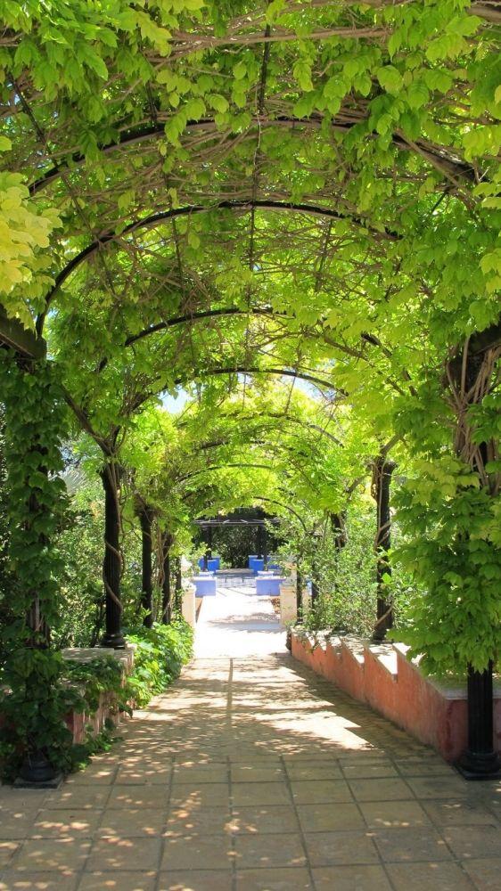 lalbarda mediterranean garden pedreguer alicante - Mediterranean Garden
