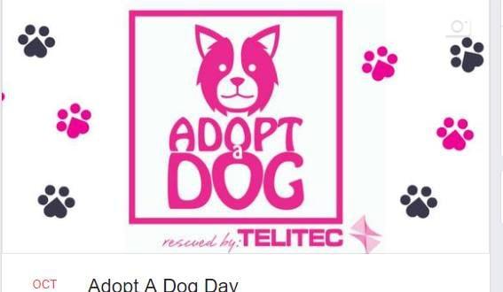 Adopt A Dog Day