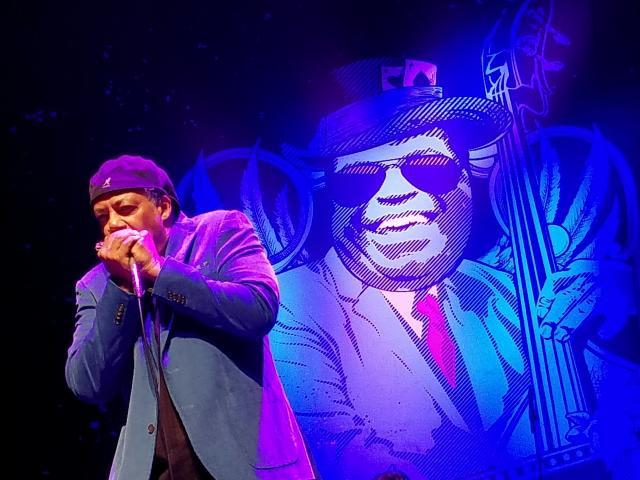 Blues legend Billy Branch live in Alicante