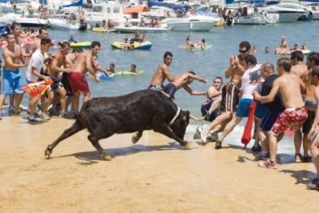 Festa Major - Denia Fiesta and bull-running