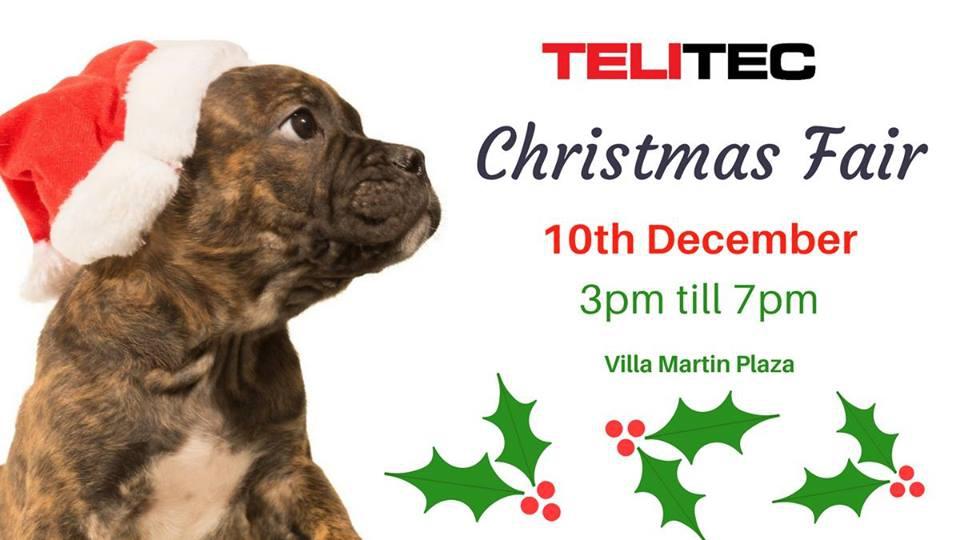 Christmas Fair in Villamartin
