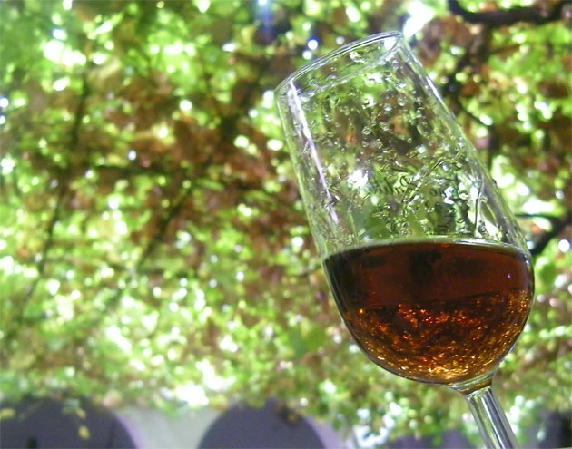 Moscatel Wine Festival in Teulada