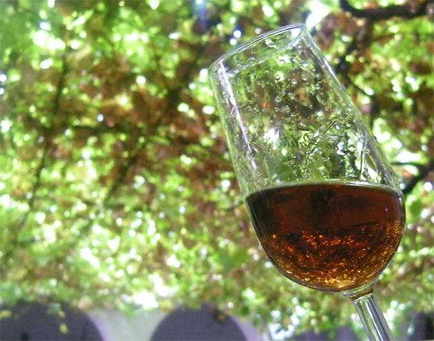 Moscatel Wine Festival in Teulada