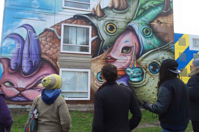 Amsterdam 2-Hour Street Art Murals Tour