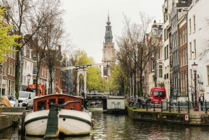 Amsterdam: Canal Cruise with a Native German Guide