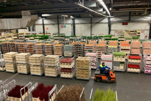 Amsterdam: Royal Flower Auction and Amsterdam Castle Tour