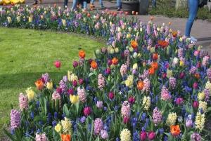 From Amsterdam: Day Trip to Keukenhof, Tulips Fields & Delft