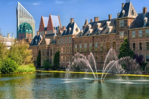 From Amsterdam: Rotterdam and The Hague Tour in Spanish