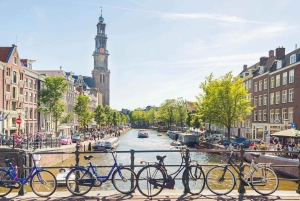From Brussels: Journey to Holland with Boat Trip