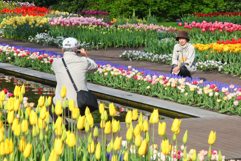 From Private Keukenhof & Flower Fields Tour