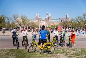 Guided 3-Hour Big City Bike Tour