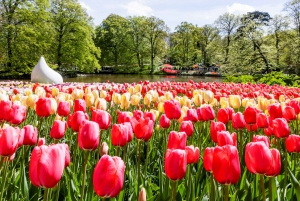 Keukenhof: Bulb Farm Full-Day Tour