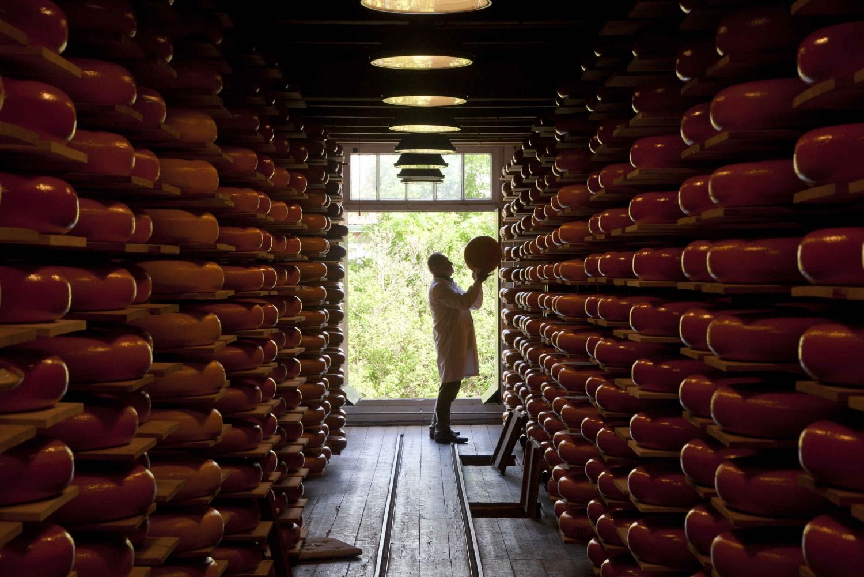 Reypenaer Cheese Tasting Room: 1 Hour Visit Including Wine
