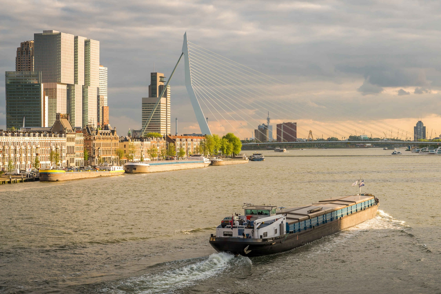 Rotterdam and The Hague Spanish Tour from Amsterdam