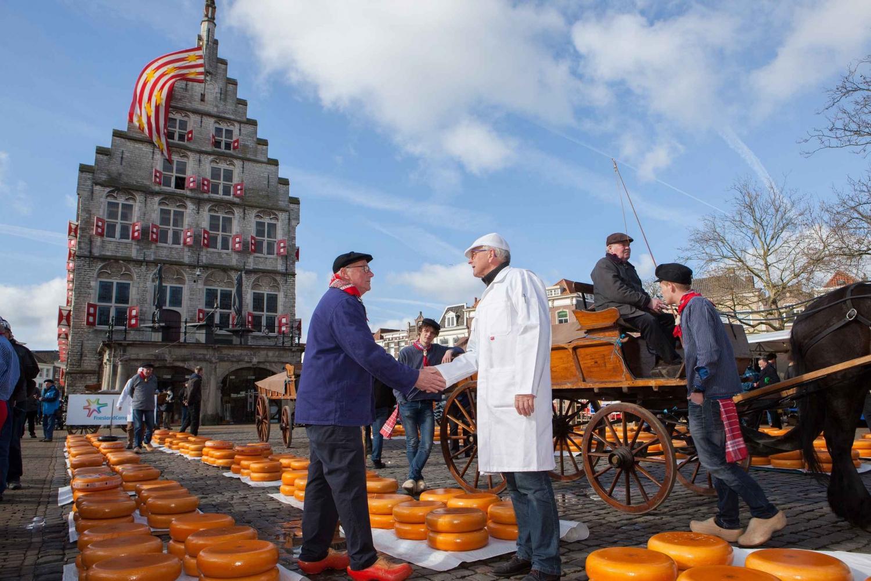 Traditional Dutch Cheese Market Tour