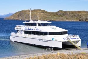 Ushuaia: Beagle Channel & Sea Wolves Island Catamaran Cruise