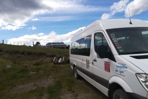 Ushuaia: Full-Day Penguin Watching & Estancia Harberton Tour