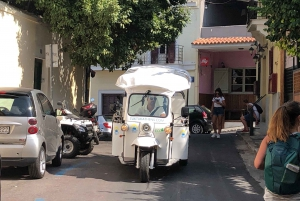 1-Hour Private Sightseeing Tour by Electric Tuk-Tuk