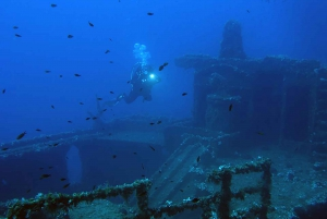 Adventure Dives in Nea Makri for Certified Divers