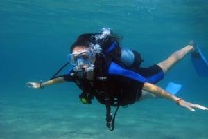 Athens East Coast: Discover Scuba Diving in Nea Makri