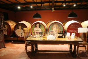 Athens: Full-Day Evia Private Wine Tour with Spa Treatment