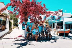Athens: Full Day Tour & Sailing to Agistri, Moni & Aegina