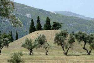 Athens Shore Excursion: Private Tour to Marathon