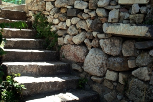 Cats of Athens: Self-Guided Mobile Tour in Plaka